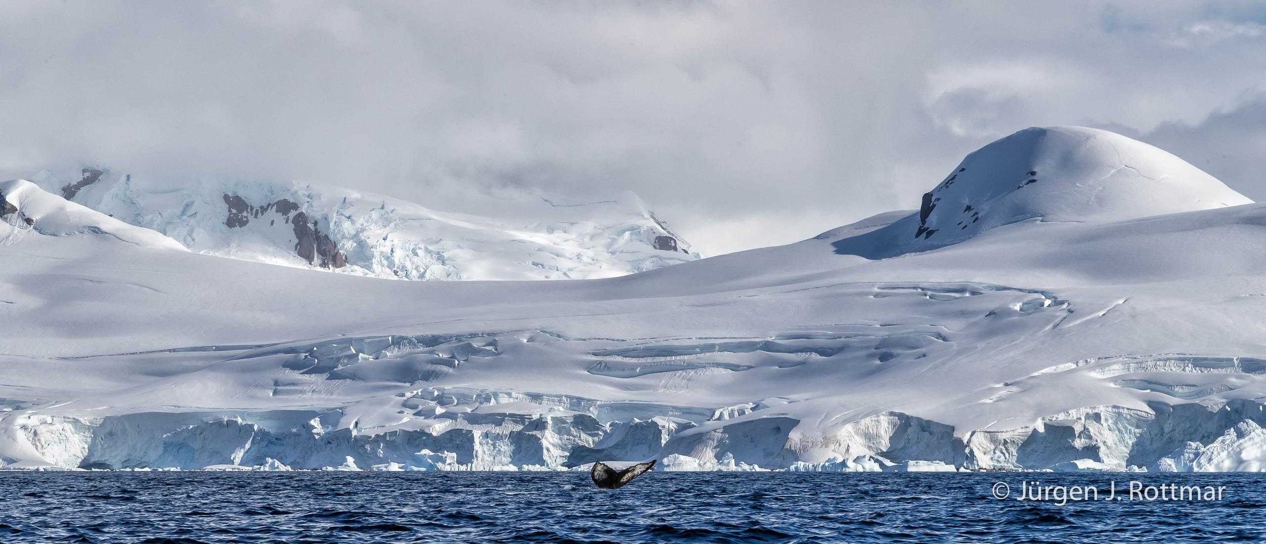 Juergen J Rottmar Antarctic Peninsula M2I1289 Bearbeitet