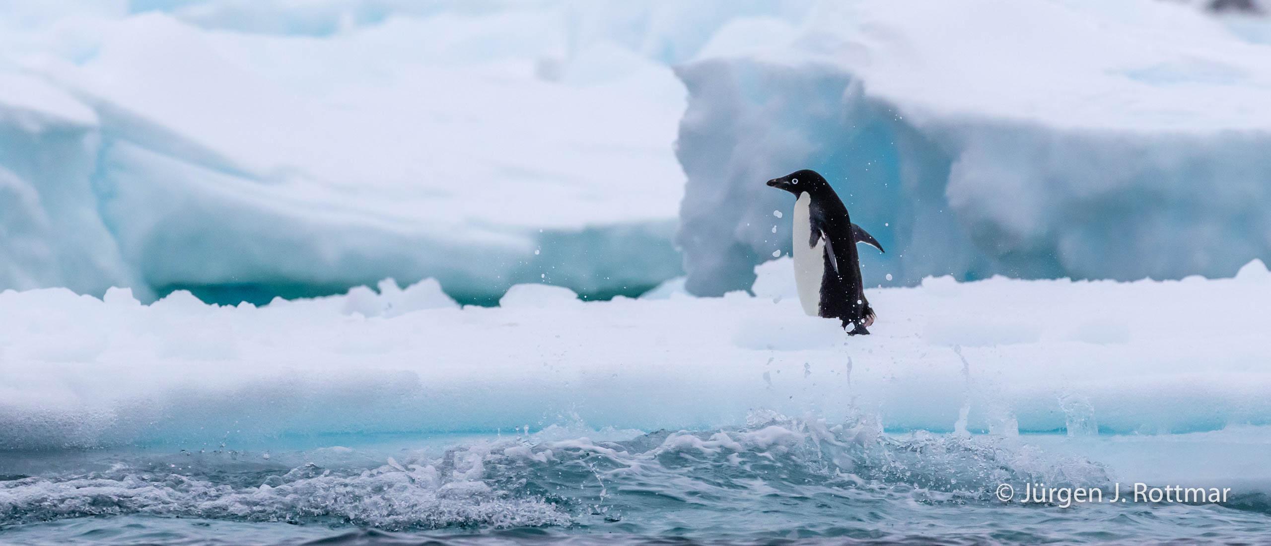 Juergen J Rottmar Antarctic Peninsula R6A4285 Bearbeitet