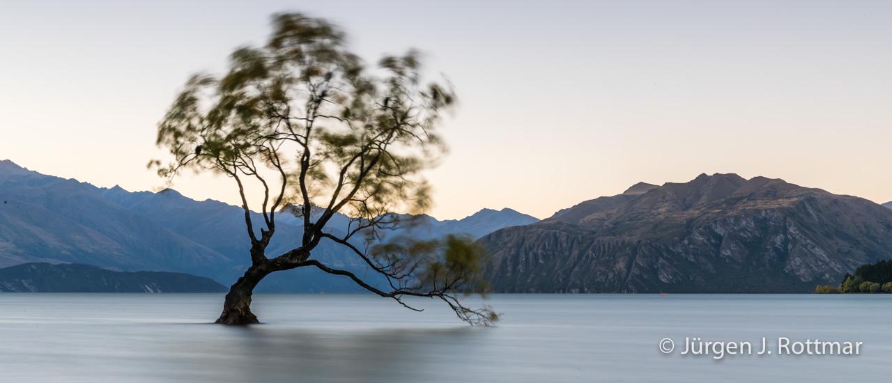 Juergen-J-Rottmar-Neuseeland-2018-MGL5496
